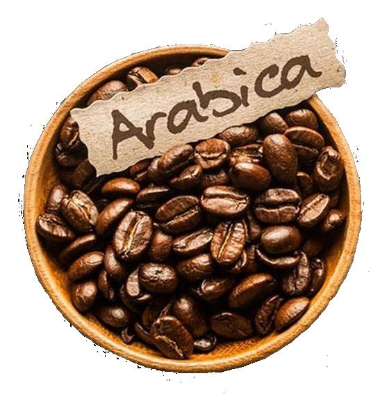 Arabica - Kávélexikon - Boro Coffee